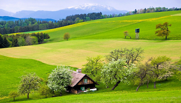 The gentle hills of Lower-Austria