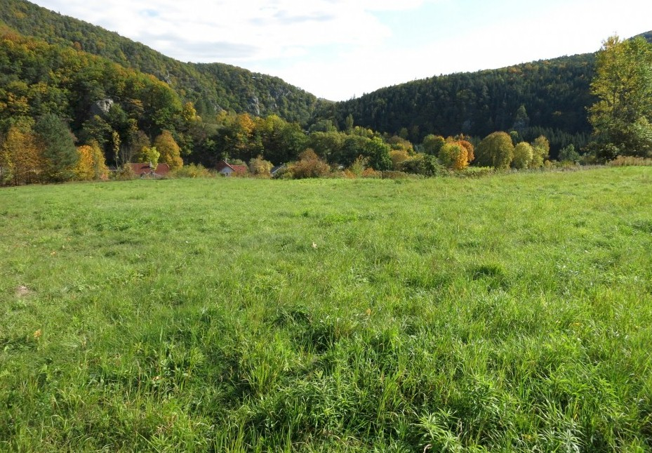 Building land for sale in Senftenberg 10km north of Krems an der Donau